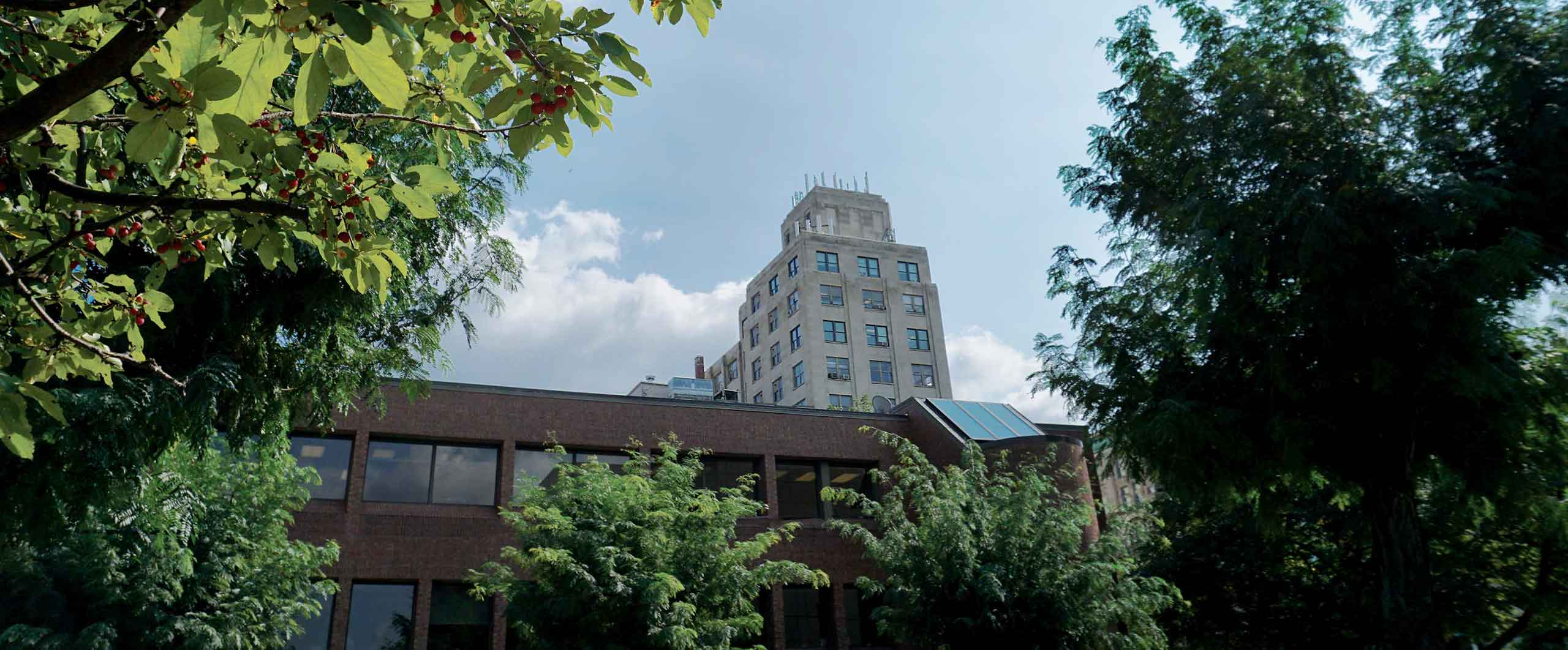 A distant view of the Bank Towers at 321 Spruce Street in Scranton